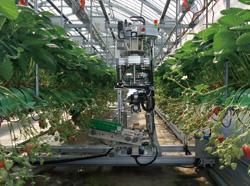 収穫ロボット